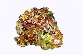Cold platters (German). Cookbook image collage. 40x40cm