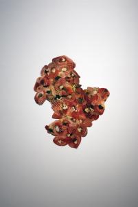 Flesh. Collage of all the images from the book Fleish-und Aufschnittplatten:meister prasentiert. 60x100cm