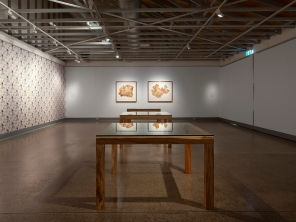 Pith, installation documentation. Caloundra Regional Gallery, Image: Carl Warner