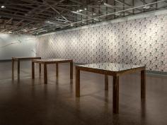 Pith, installation documentation. Caloundra Regional Gallery, Image: Carl Warner